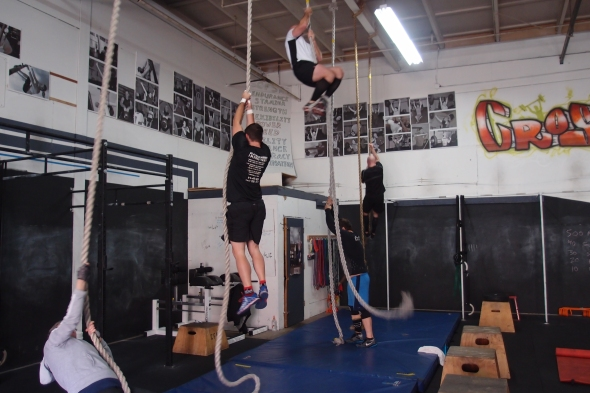 Learn the Ropes at CFSR